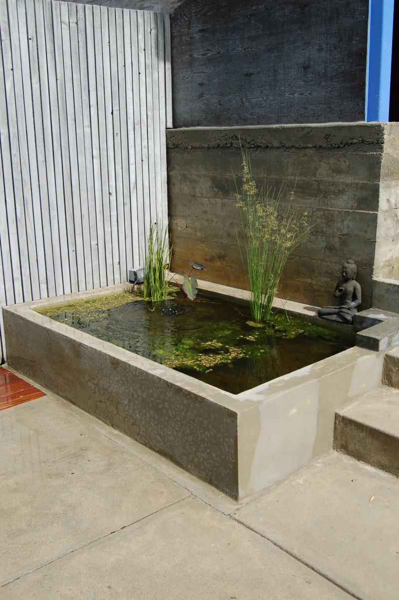 Echo Park Fish Pond